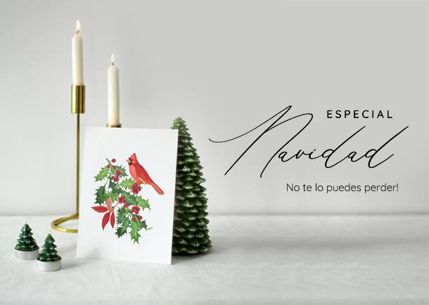 promo-navidad-especial-somethingcute